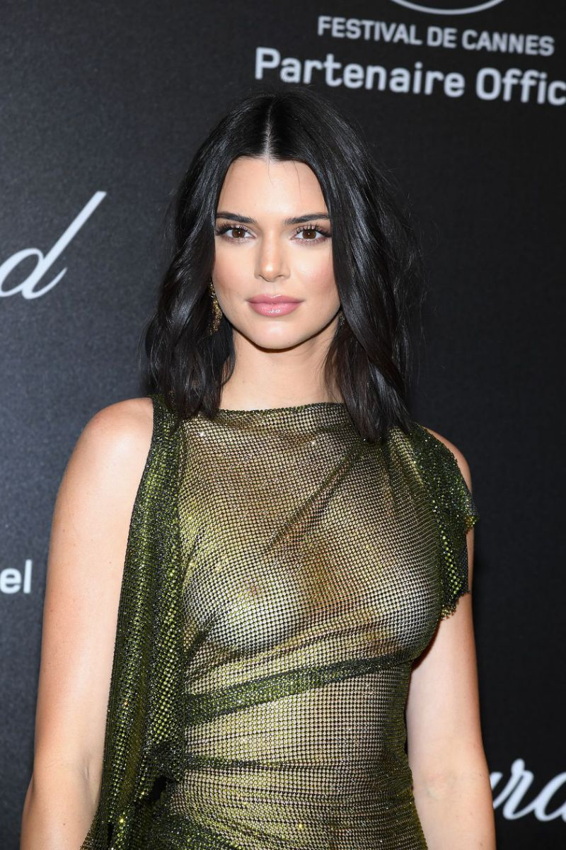 Kendall Jenner Wears Totally Sheer Dress